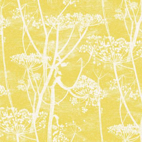 Cole & Son Contemporary Collection Wallpapers Cow Parsley Wallpaper - 66/7051