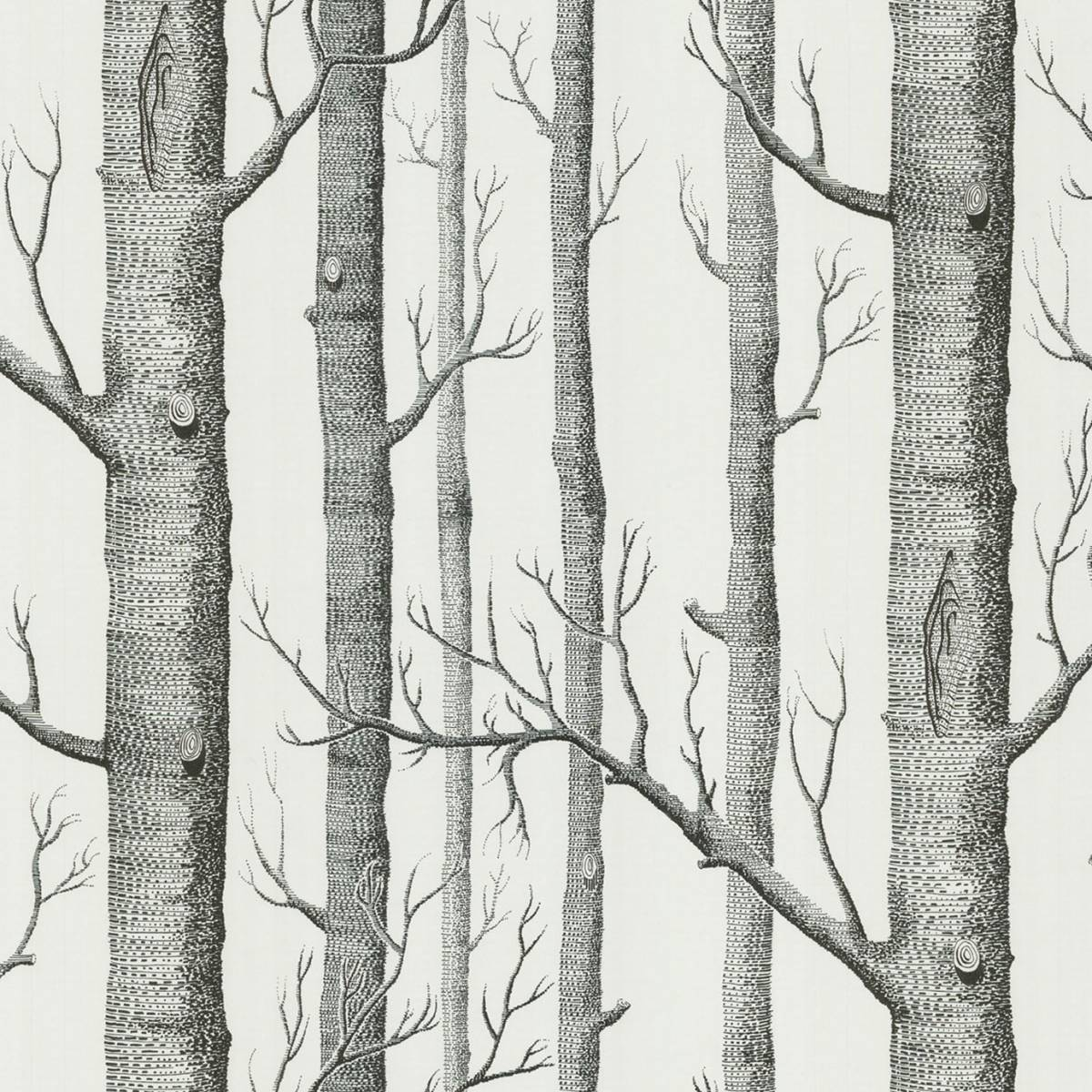 Cole Son Woods Wallpaperproduct Code 6912147