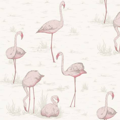 Cole & Son Contemporary Collection Wallpapers Flamingos Wallpaper - 95/8045