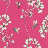 Amazilia Wallpaper - Flamingo