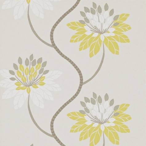 Harlequin Purity Wallpapers Eloise Wallpaper - Chartreuse/Warm Grey - 111190