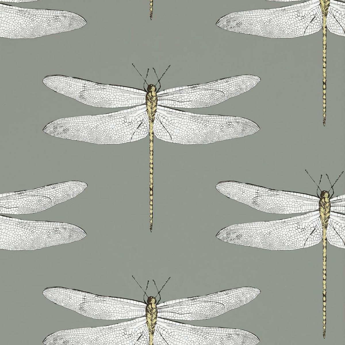 Demoiselle Wallpaper Graphite Almond 111242