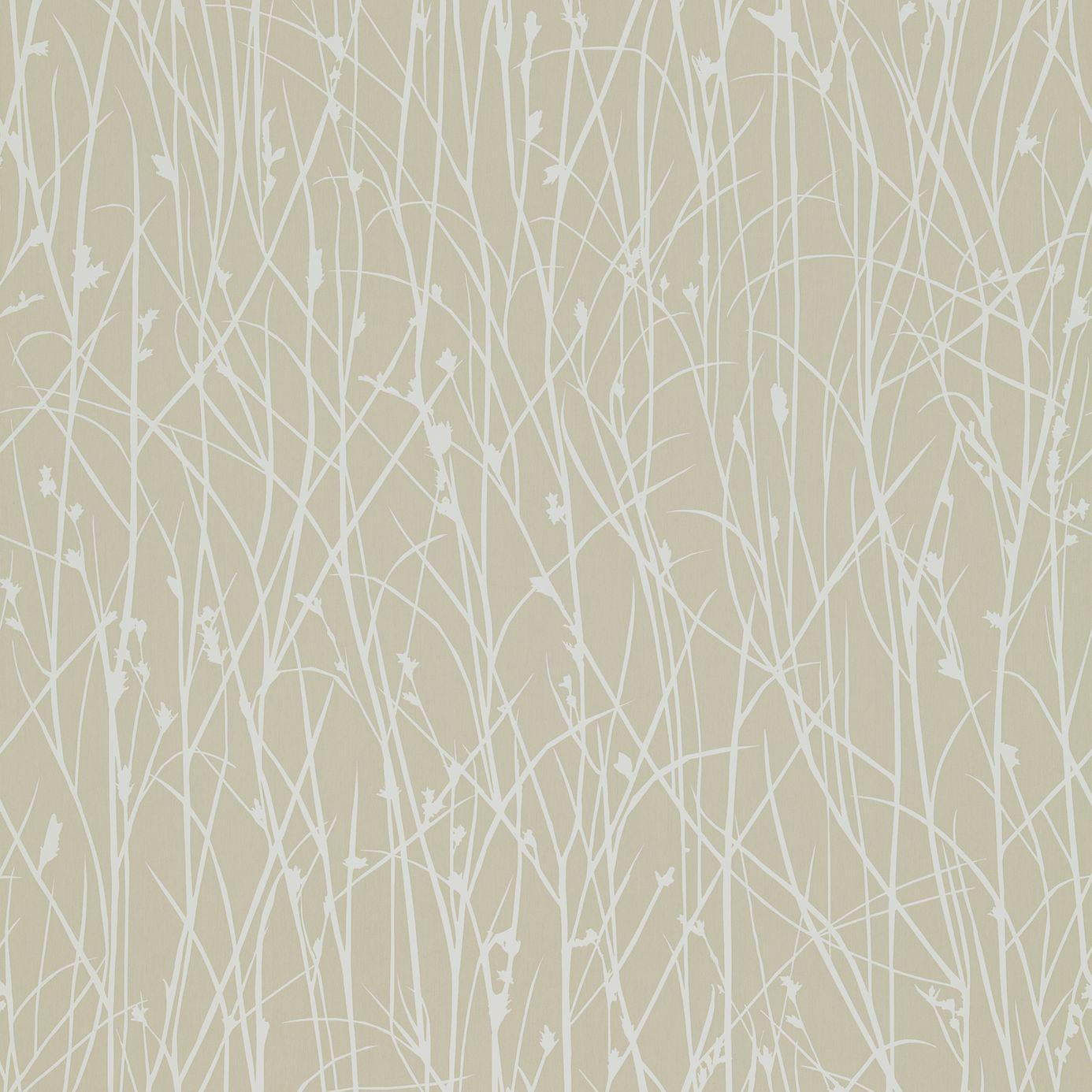 Grasses wallpaper natural white 110149 harlequin kallianthi wallpapers collection - Wall wallpaper designs ...