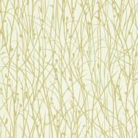 Grasses Wallpaper - Ercu/Celery