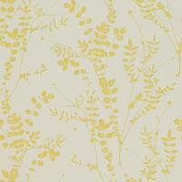 Salvia Wallpaper - Putty/Citrine