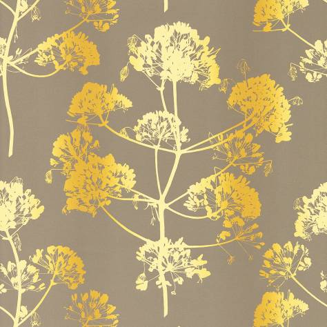 Harlequin Callista Wallpapers Angeliki Wallpaper - Mimosa/Antique Gold - 111403