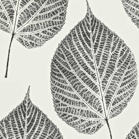 Harlequin Momentum Wallpapers Vol. 2 Leaf Wallpaper - Onyx/Chalk - 110373