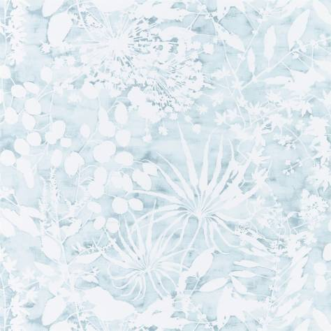 Harlequin Anthozoa Wallpapers Coralline Wallpaper - Ocean - 111637